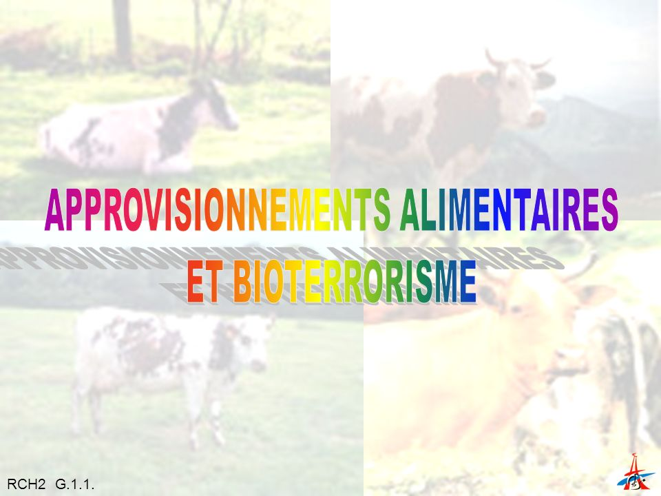 APPROVISIONNEMENTS ALIMENTAIRES