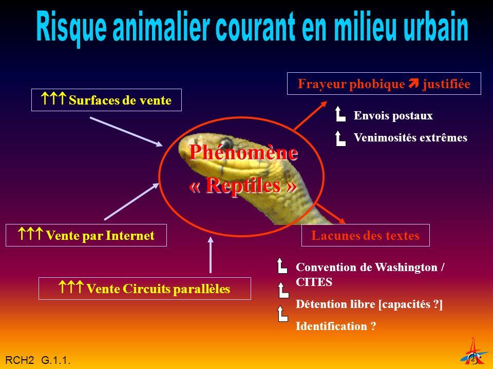 Frayeur phobique  justifiée  Vente Circuits parallèles