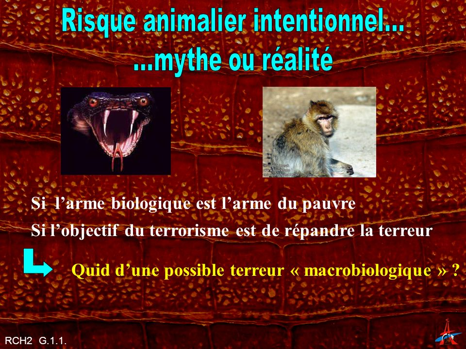 Risque animalier intentionnel...