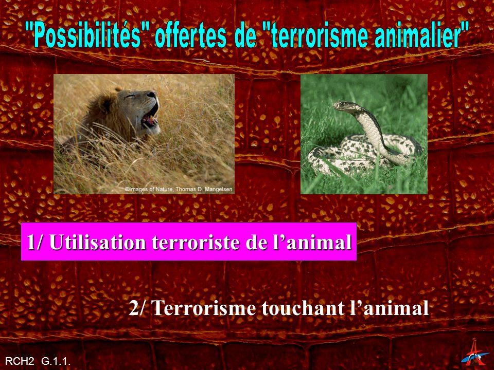 Possibilités offertes de terrorisme animalier