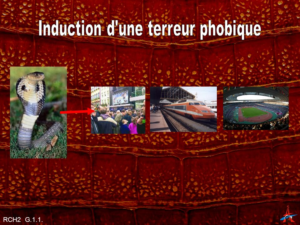 Induction d une terreur phobique