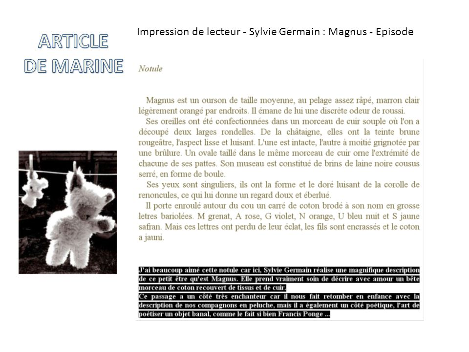 Impression de lecteur - Sylvie Germain : Magnus - Episode