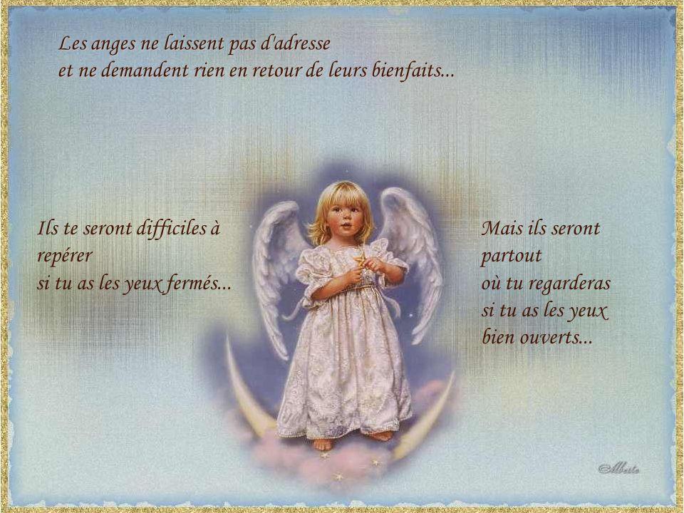 Les anges ne laissent pas d adresse