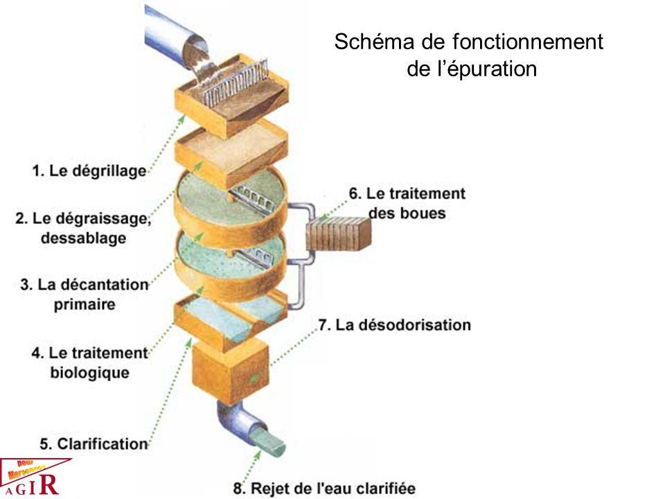 Schéma de fonctionnement de l'épuration