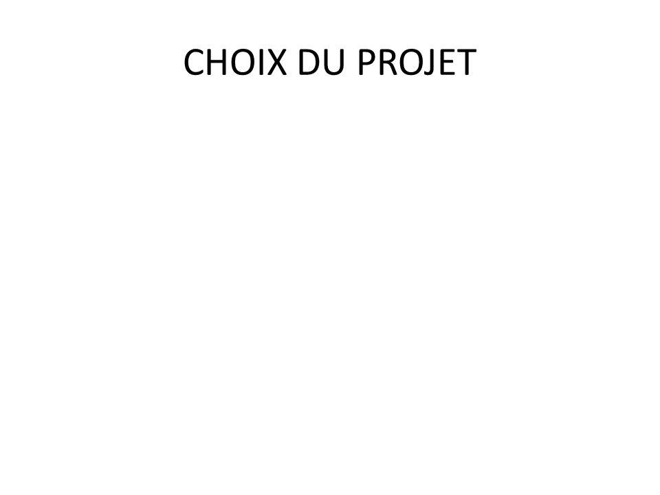 CHOIX DU PROJET