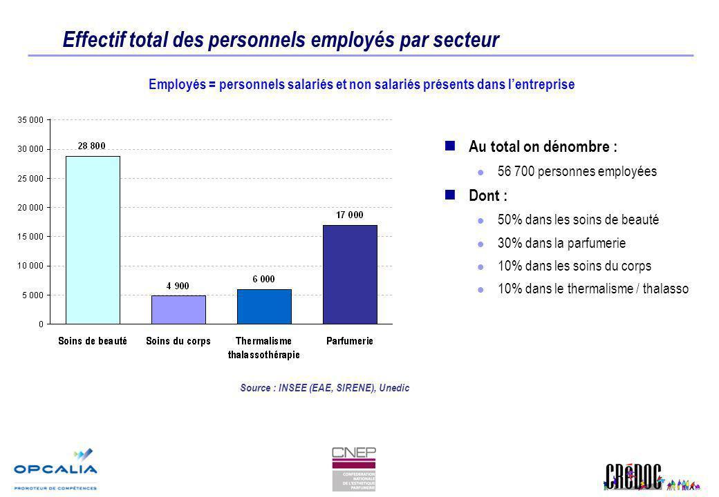 Effectif total des personnels employés par secteur