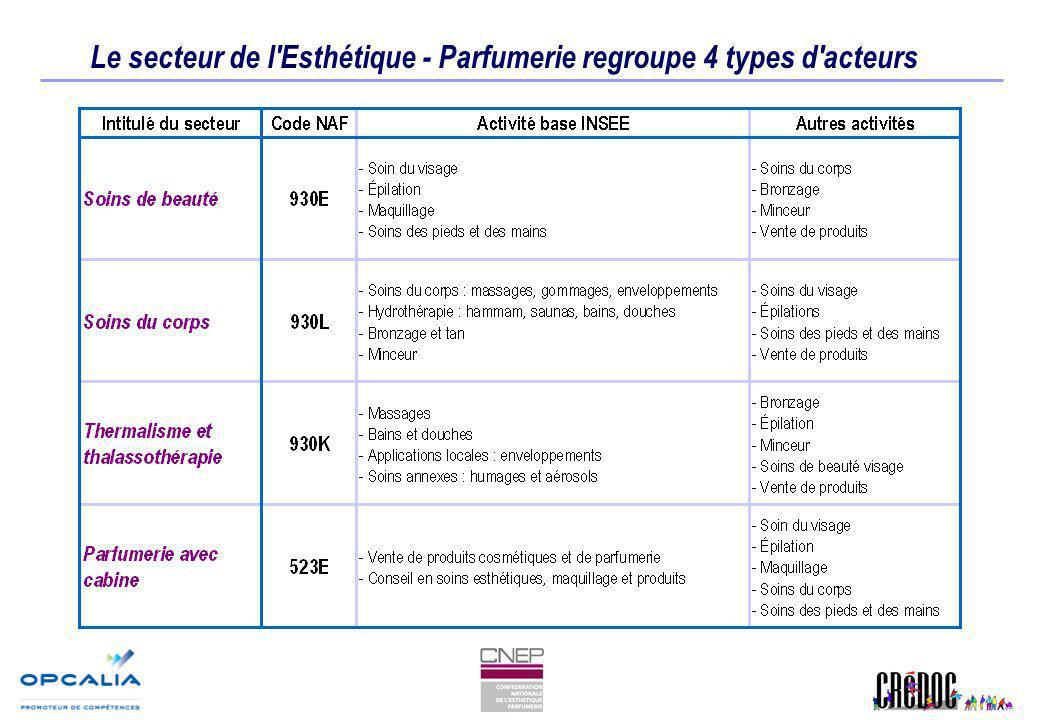 Le secteur de l Esthétique - Parfumerie regroupe 4 types d acteurs