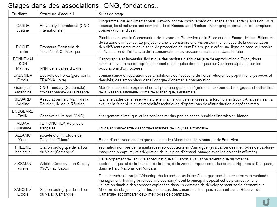 Stages dans des associations, ONG, fondations..