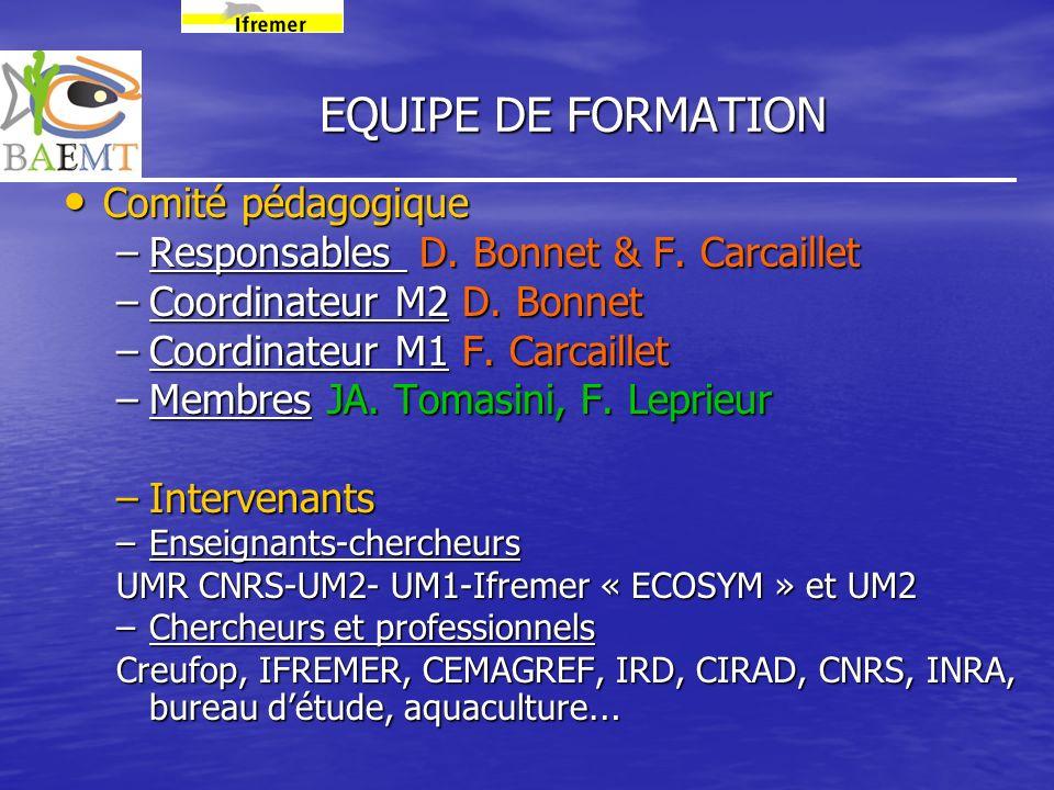 EQUIPE DE FORMATION Comité pédagogique