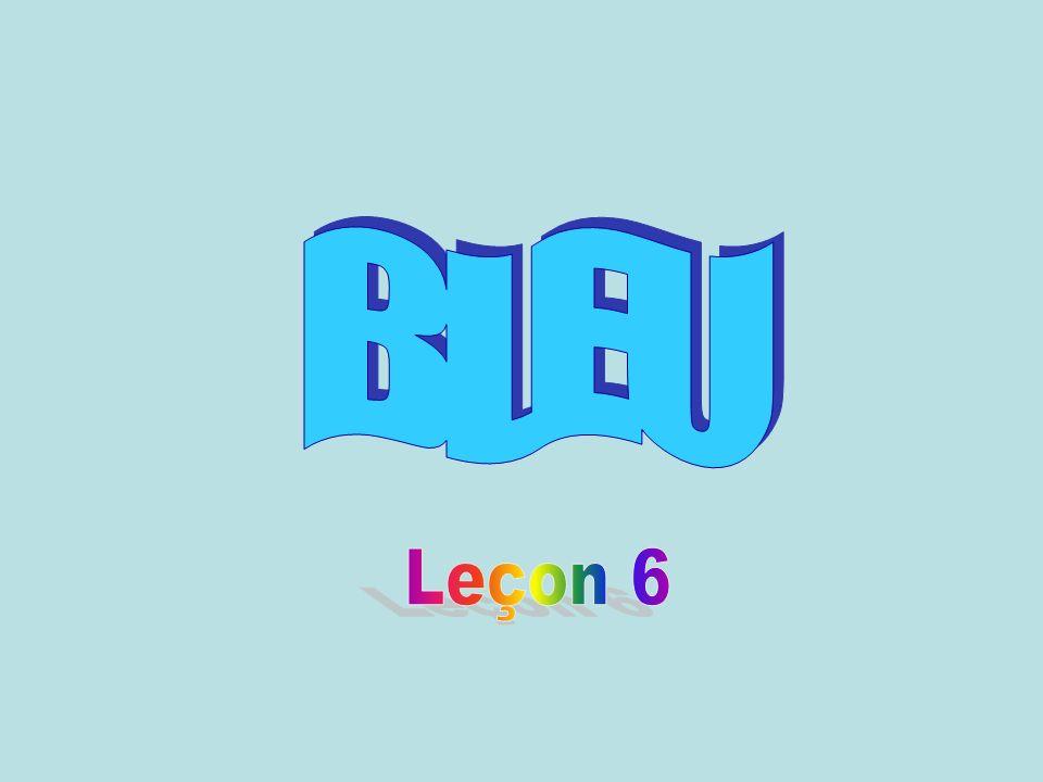BLEU Leçon 6