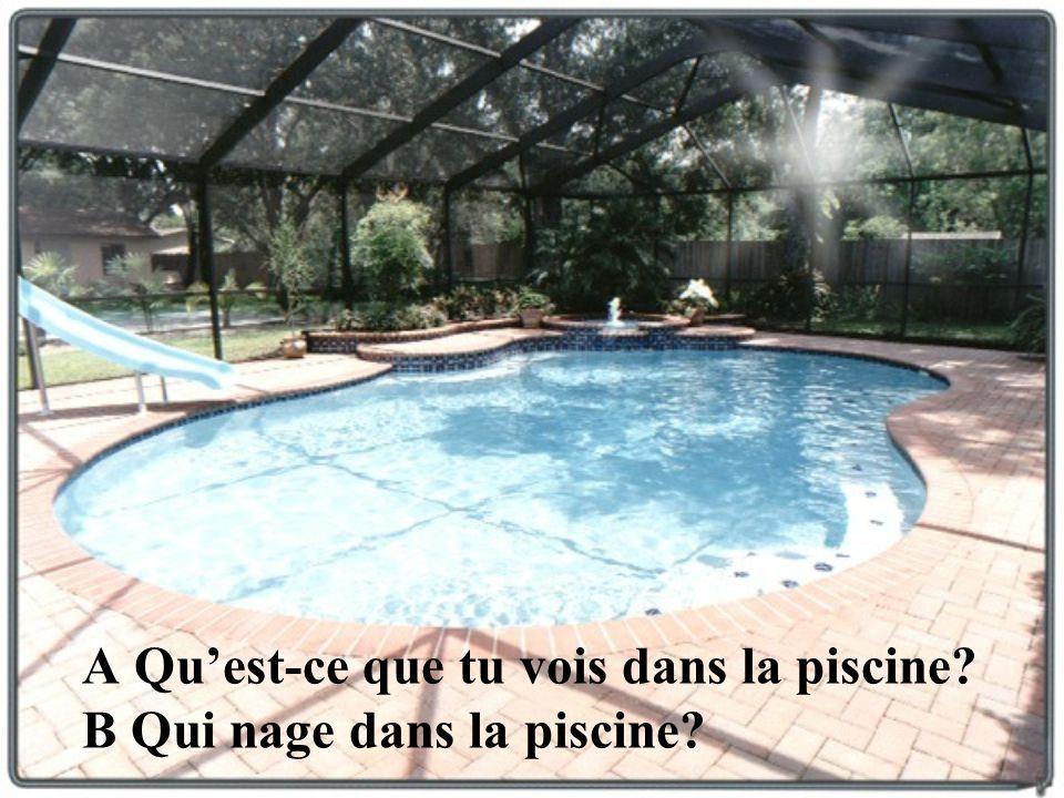 A Qu'est-ce que tu vois dans la piscine B Qui nage dans la piscine