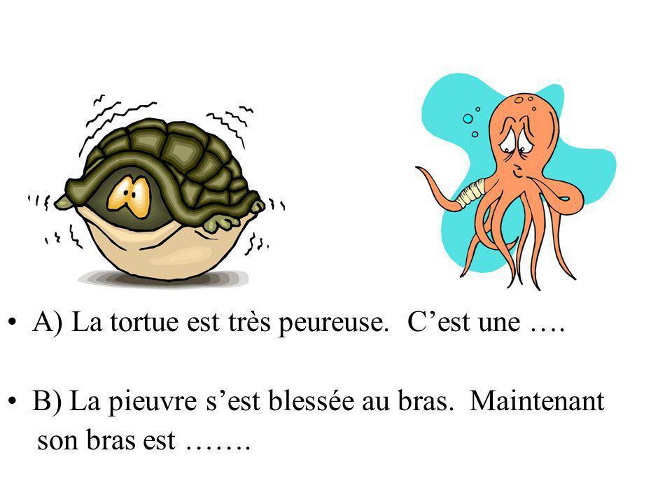 A) La tortue est très peureuse. C'est une ….