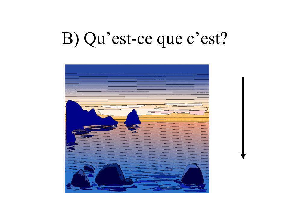 B) Qu'est-ce que c'est