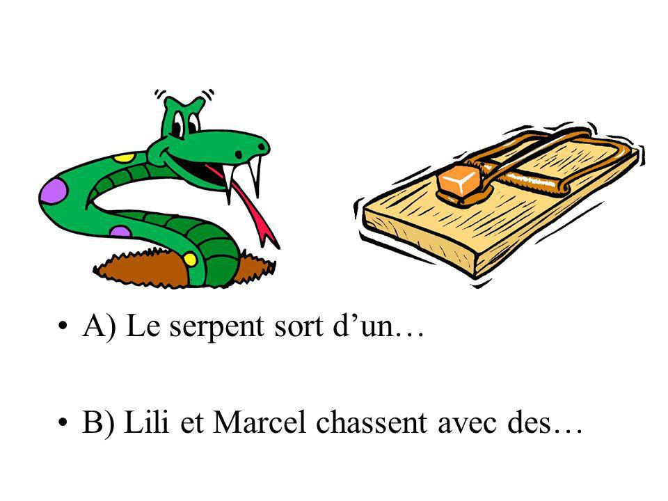 A) Le serpent sort d'un…