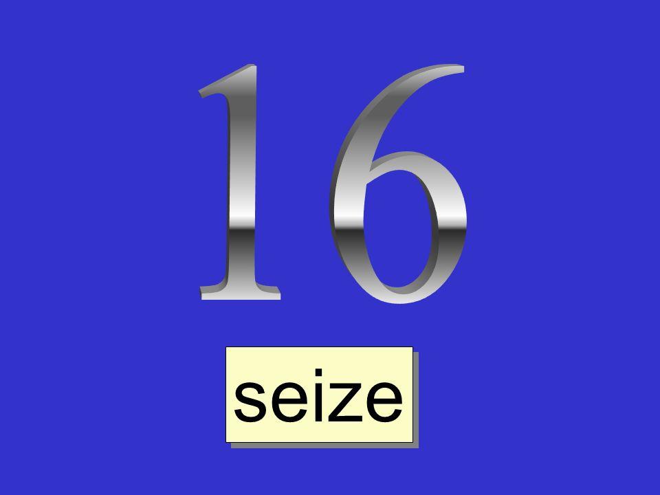 16 seize
