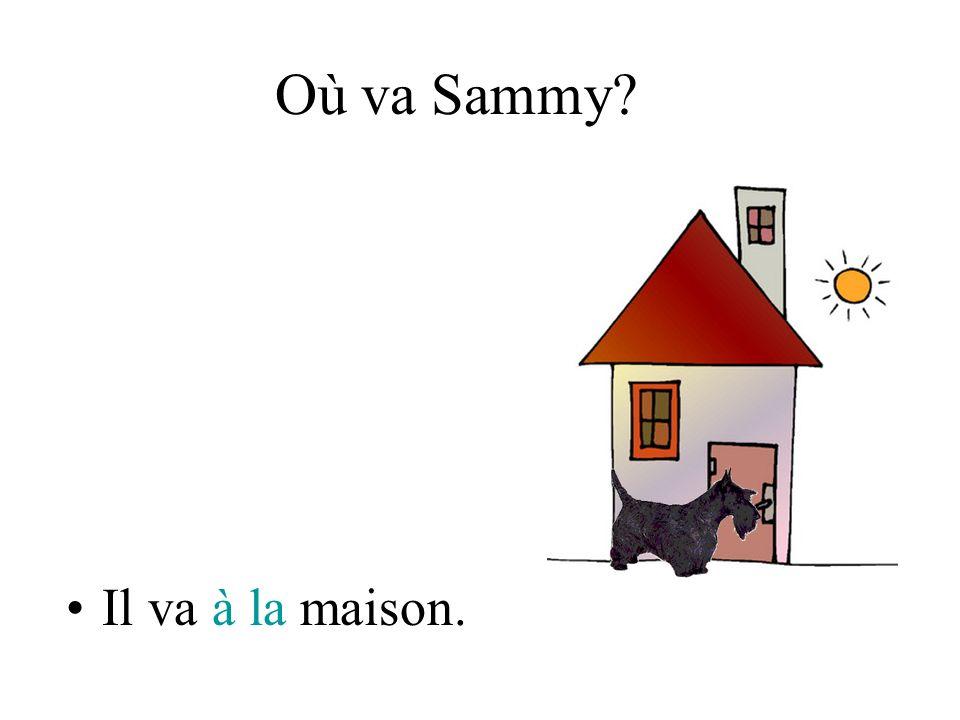 Où va Sammy Il va à la maison.