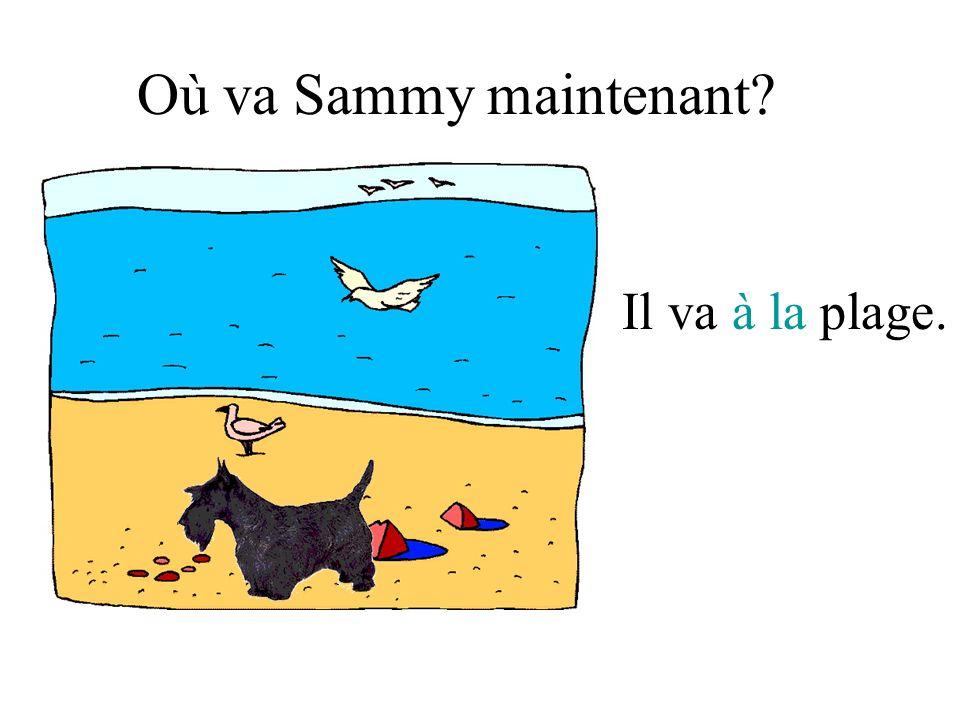 Où va Sammy maintenant Il va à la plage.