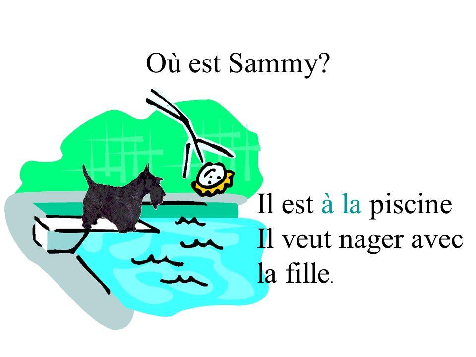 Où est Sammy Il est à la piscine Il veut nager avec la fille.