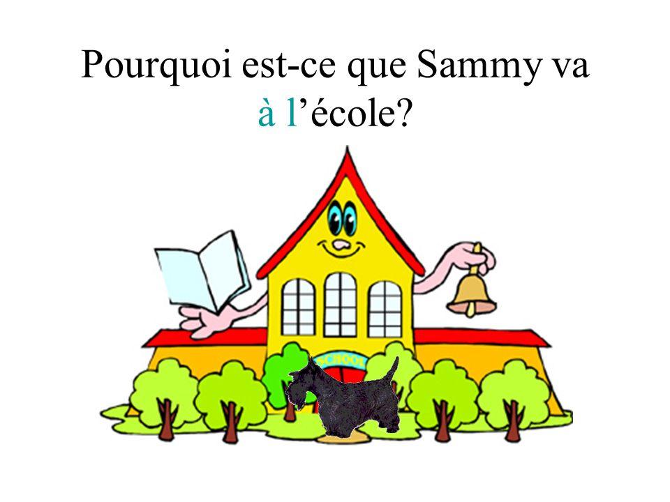 Pourquoi est-ce que Sammy va à l'école