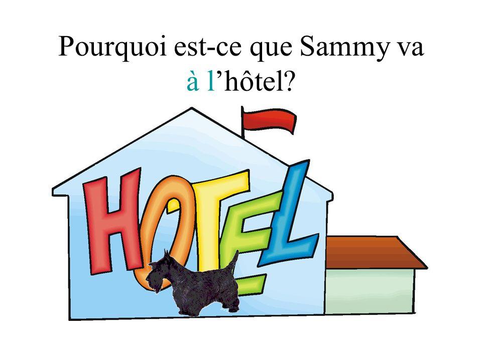 Pourquoi est-ce que Sammy va à l'hôtel