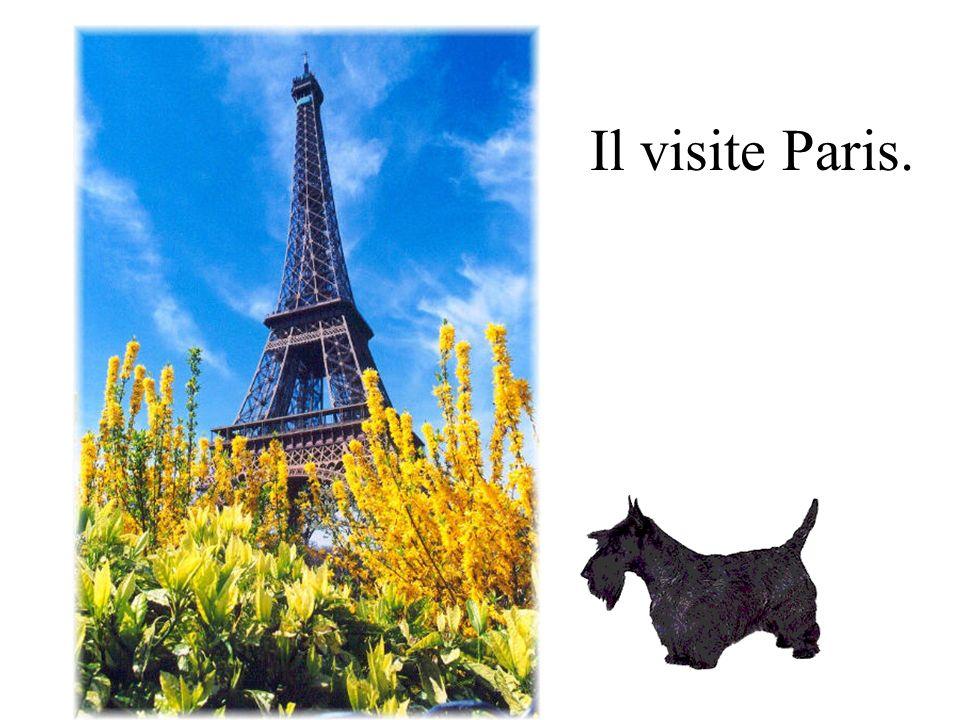 Il visite Paris.