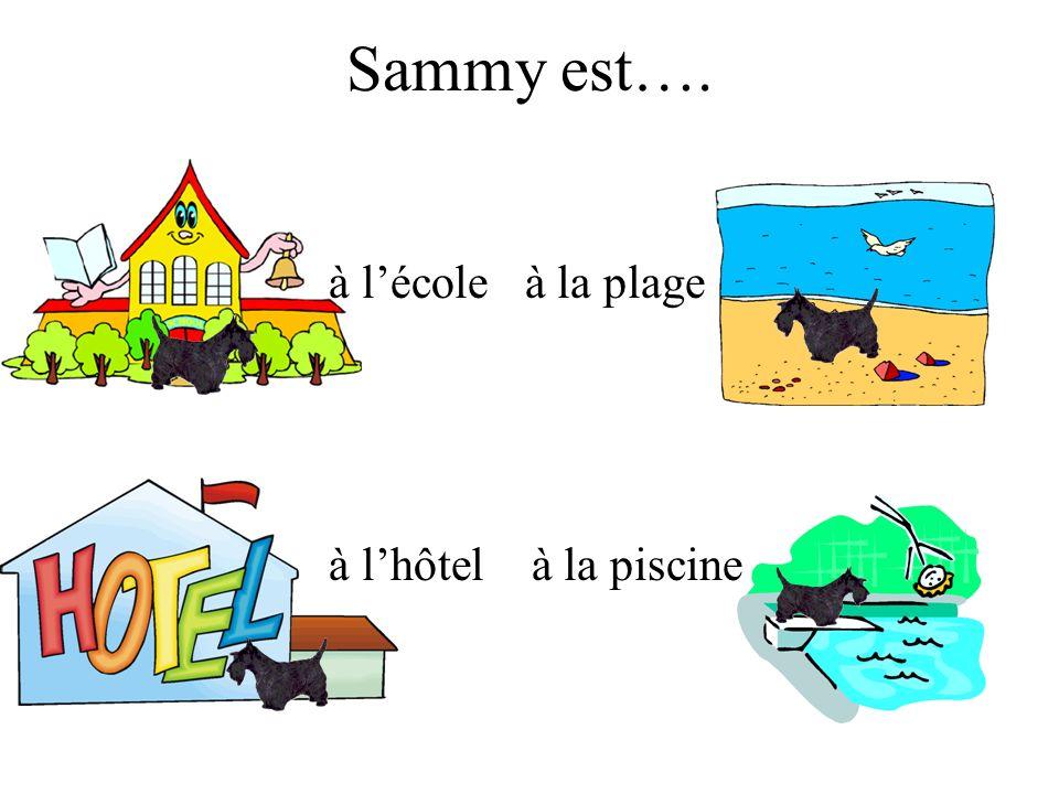 Sammy est…. à l'école à la plage à l'hôtel à la piscine
