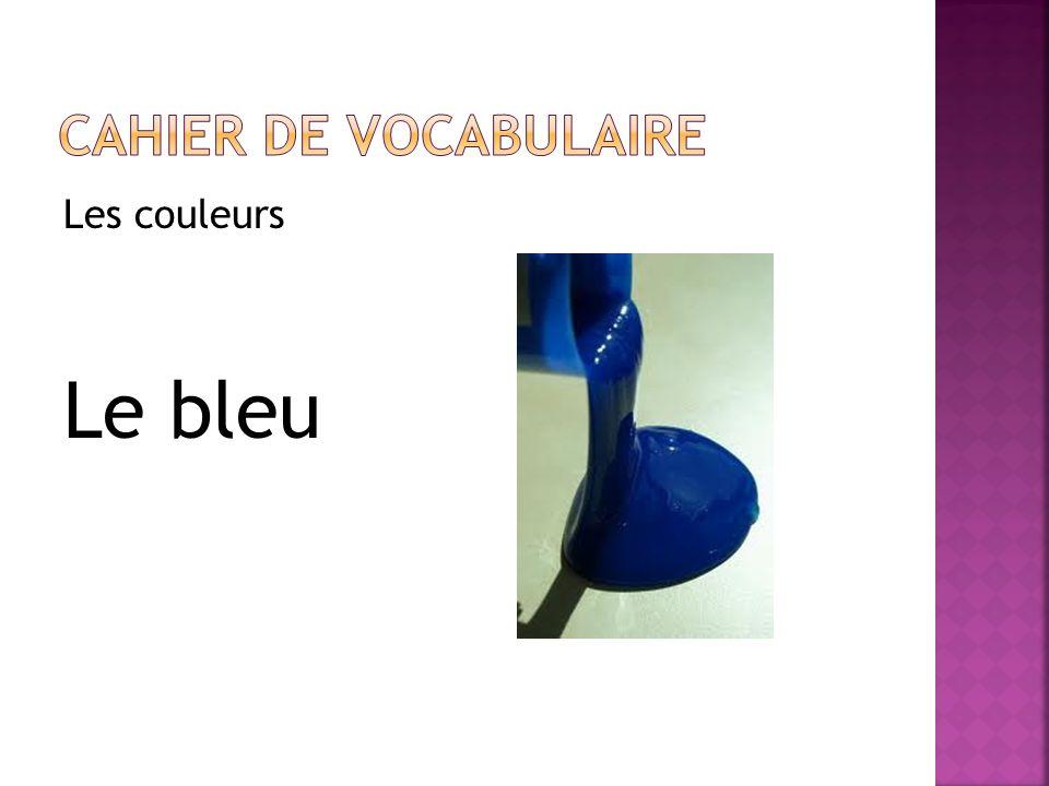 Cahier de vocabulaire Les couleurs Le bleu