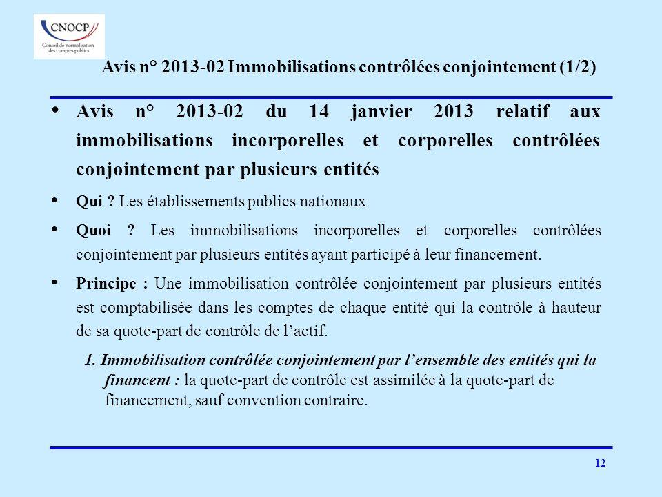 Avis n° 2013-02 Immobilisations contrôlées conjointement (1/2)
