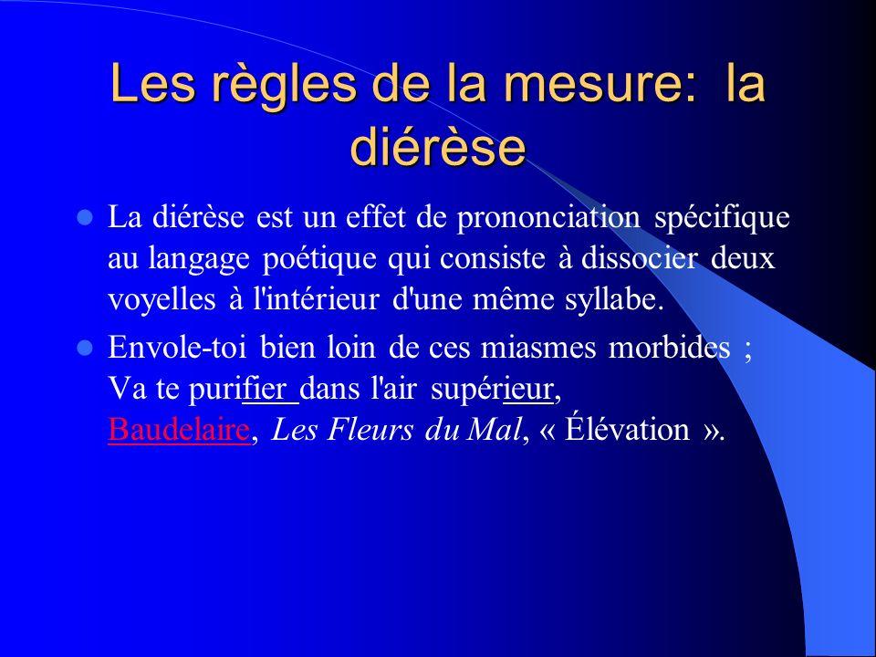 Les règles de la mesure: la diérèse