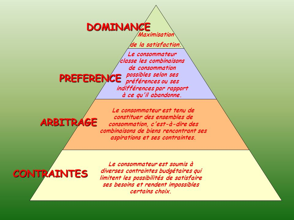 DOMINANCE PREFERENCE ARBITRAGE CONTRAINTES Maximisation