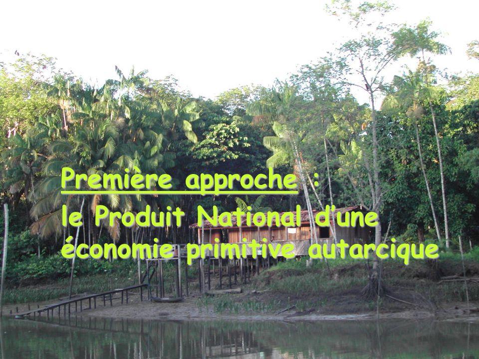 Première approche : le Produit National d'une économie primitive autarcique