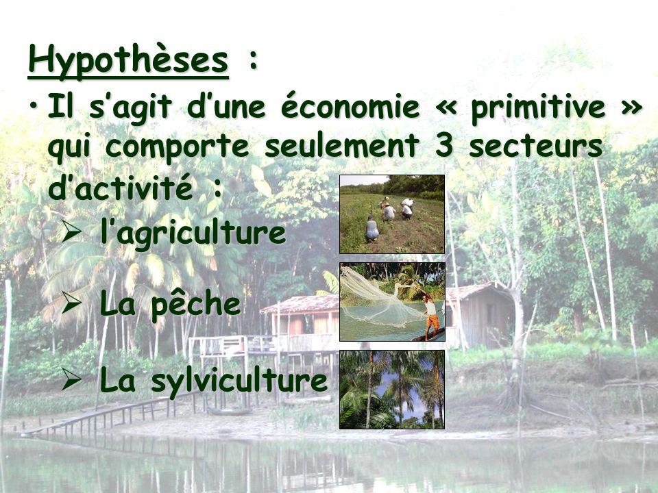 Hypothèses :Il s'agit d'une économie « primitive » qui comporte seulement 3 secteurs d'activité : l'agriculture.