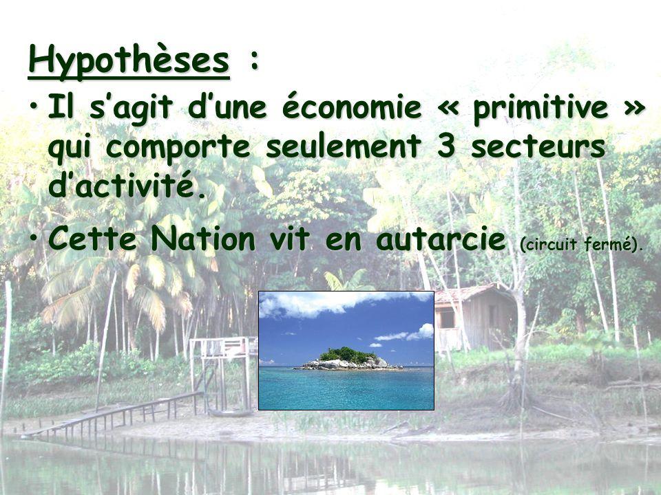 Hypothèses :Il s'agit d'une économie « primitive » qui comporte seulement 3 secteurs d'activité.