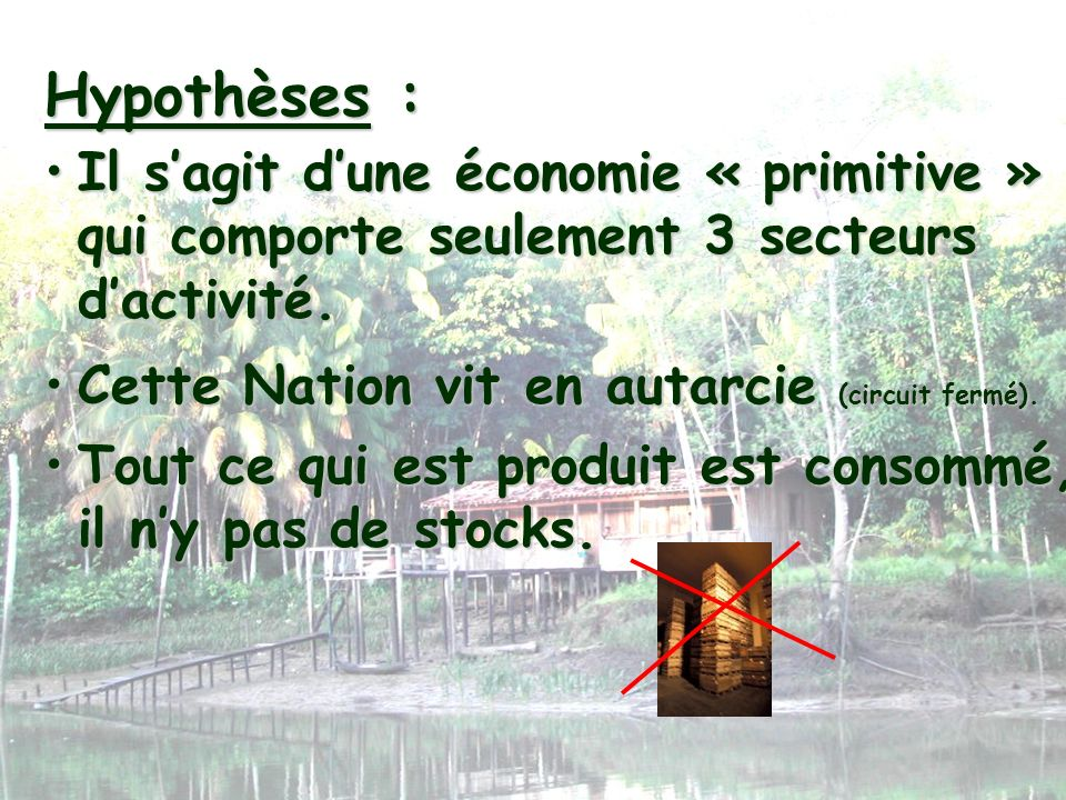 Hypothèses : Il s'agit d'une économie « primitive » qui comporte seulement 3 secteurs d'activité. Cette Nation vit en autarcie (circuit fermé).