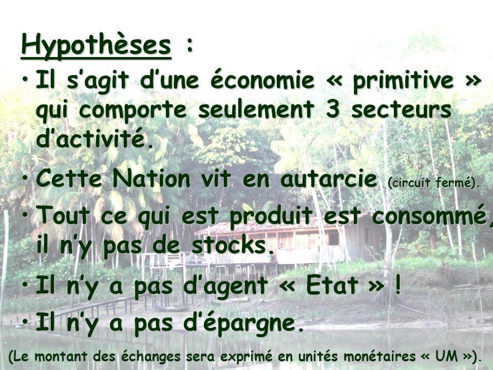 Hypothèses :Il s'agit d'une économie « primitive » qui comporte seulement 3 secteurs d'activité. Cette Nation vit en autarcie (circuit fermé).
