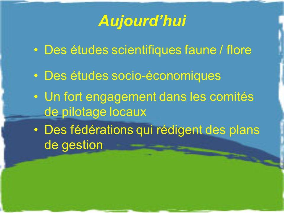 Aujourd'hui Des études scientifiques faune / flore