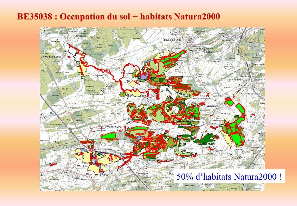 BE35038 : Occupation du sol + habitats Natura2000