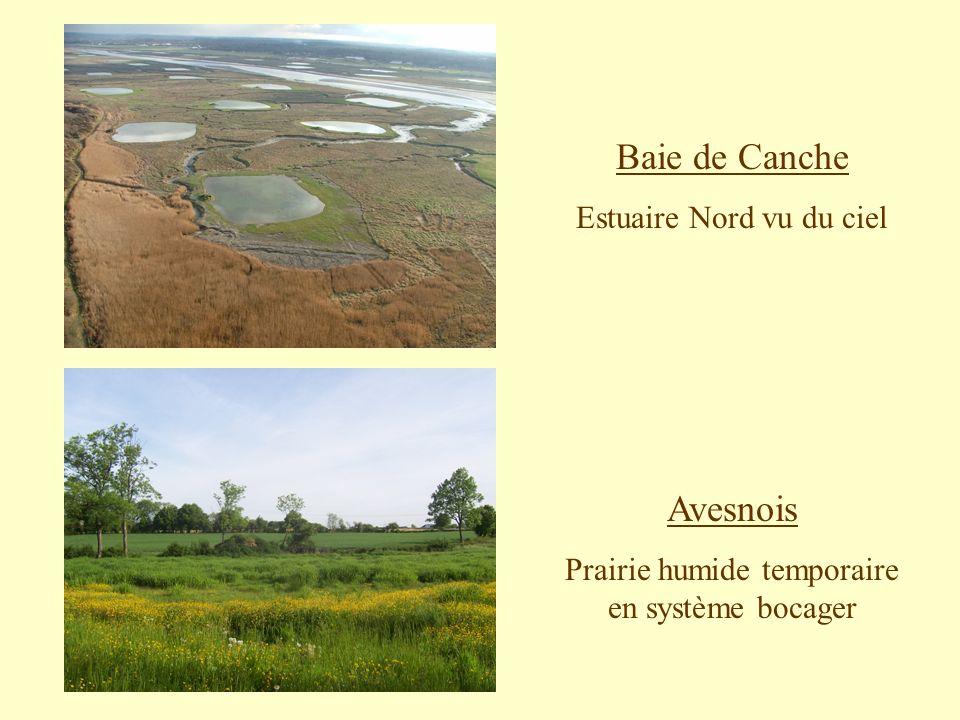 Baie de Canche Avesnois Estuaire Nord vu du ciel