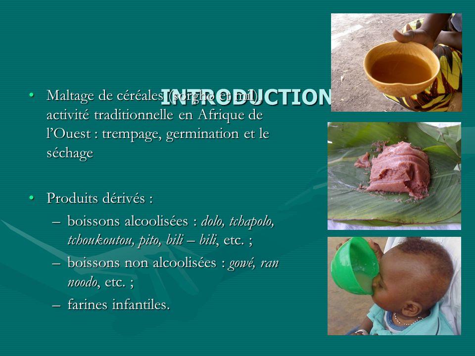 INTRODUCTION Maltage de céréales (sorgho et mil), activité traditionnelle en Afrique de l'Ouest : trempage, germination et le séchage.