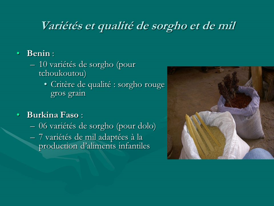 Variétés et qualité de sorgho et de mil