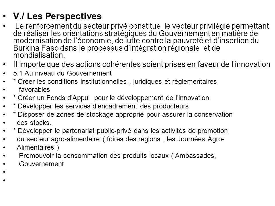 V./ Les Perspectives