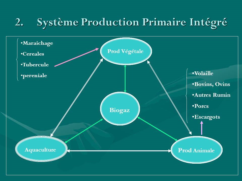 Système Production Primaire Intégré