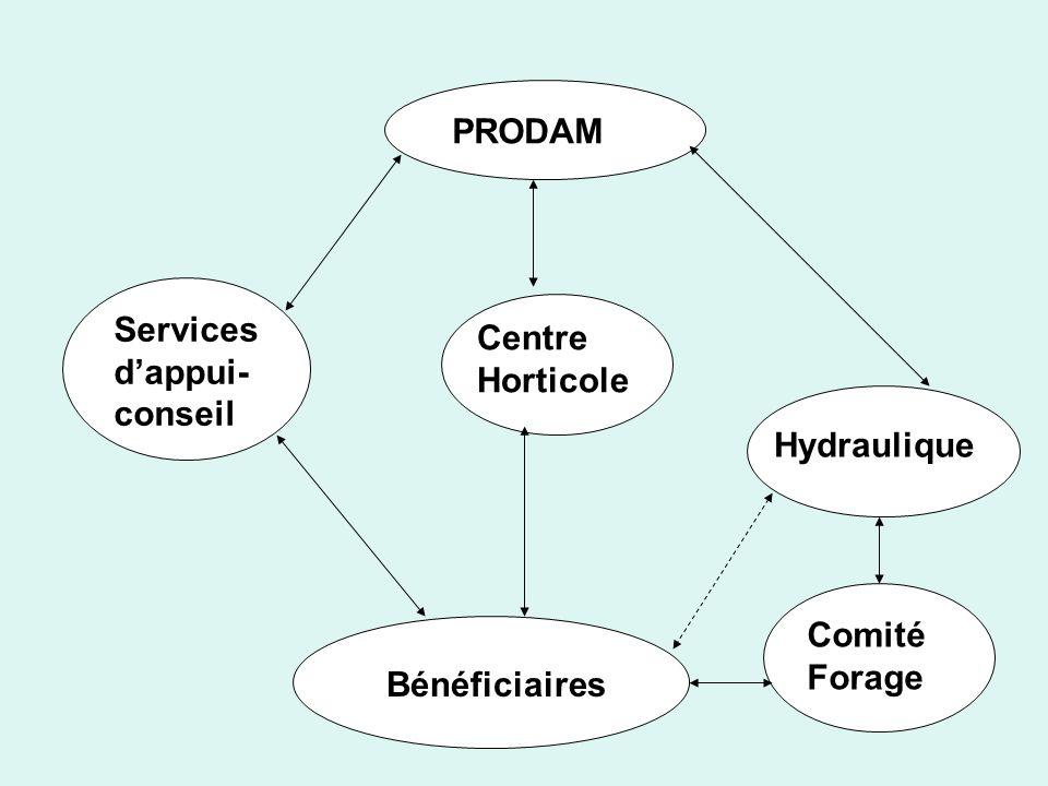 Bénéficiaires Comité Forage Hydraulique Centre Horticole Services d'appui-conseil PRODAM