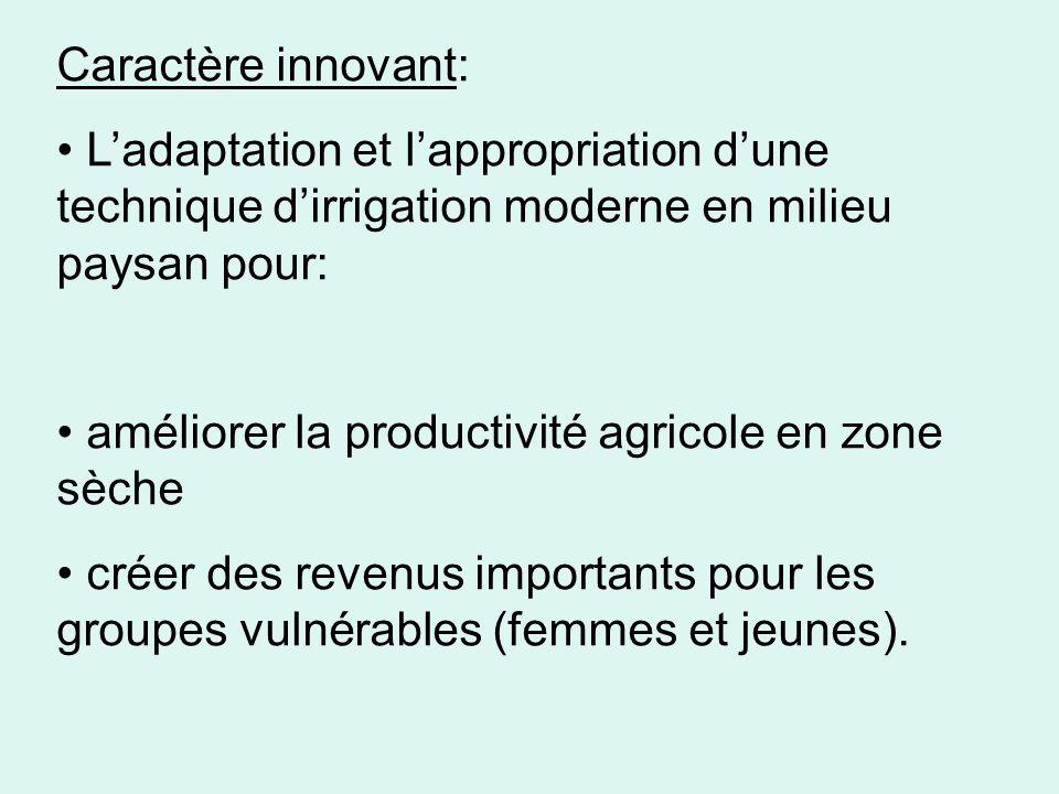 Caractère innovant: L'adaptation et l'appropriation d'une technique d'irrigation moderne en milieu paysan pour: