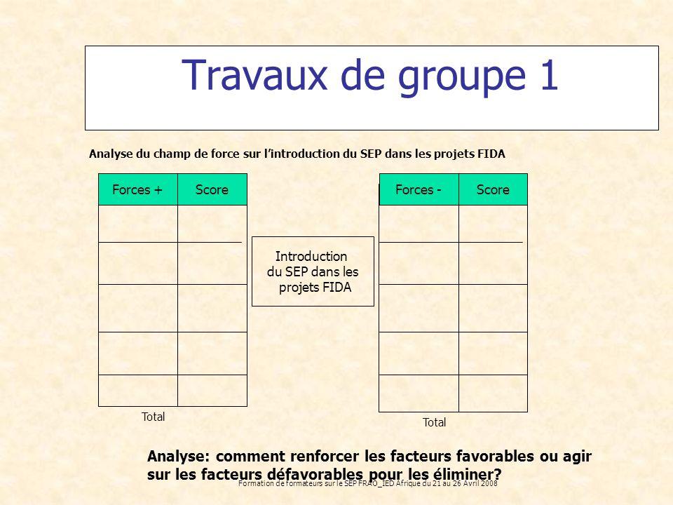 Travaux de groupe 1 Analyse du champ de force sur l'introduction du SEP dans les projets FIDA. Forces +