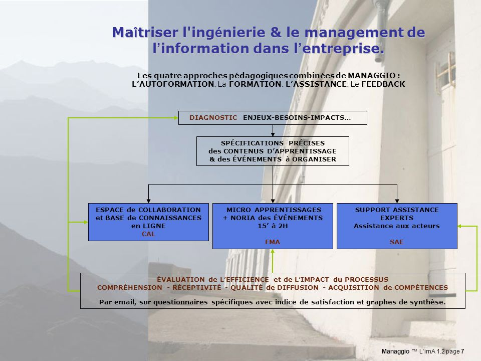 Maîtriser l ingénierie & le management de l'information dans l'entreprise.