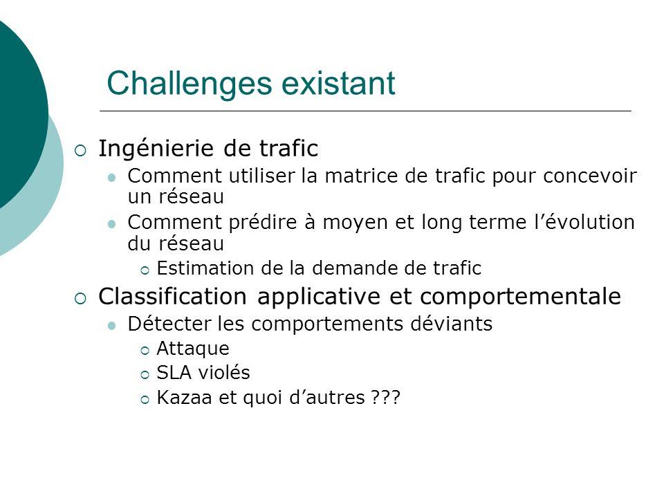 Challenges existant Ingénierie de trafic