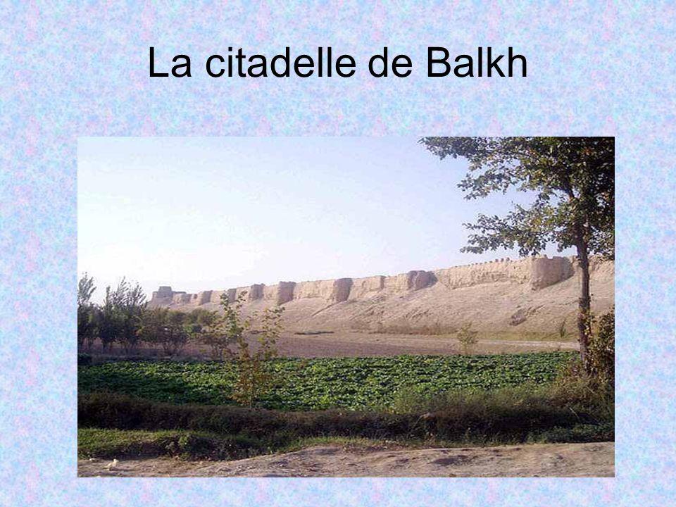 La citadelle de Balkh