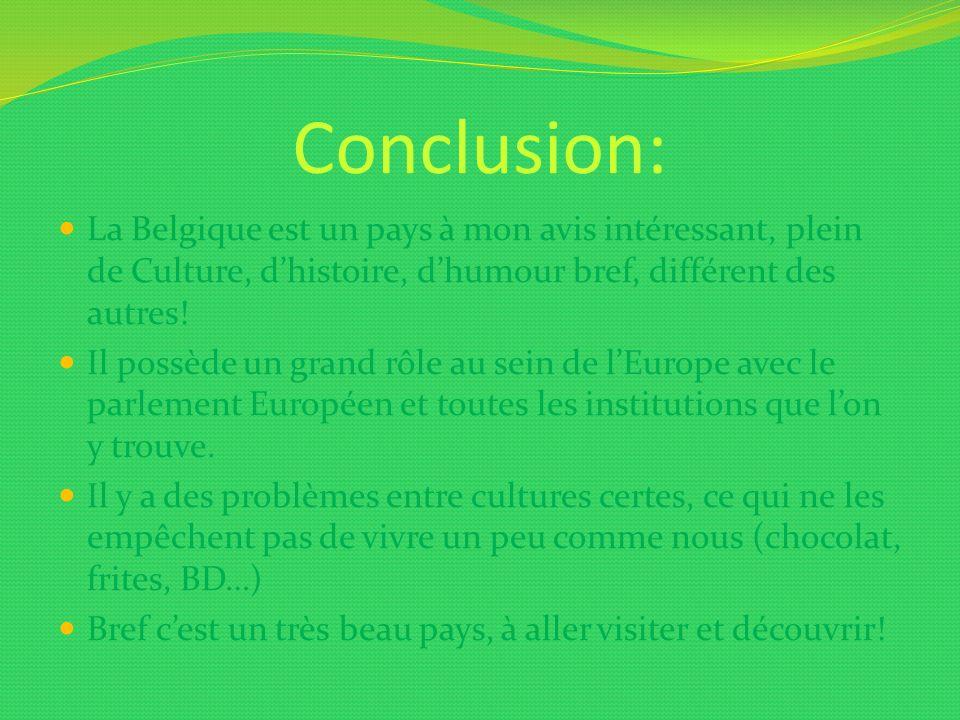 Conclusion: La Belgique est un pays à mon avis intéressant, plein de Culture, d'histoire, d'humour bref, différent des autres!