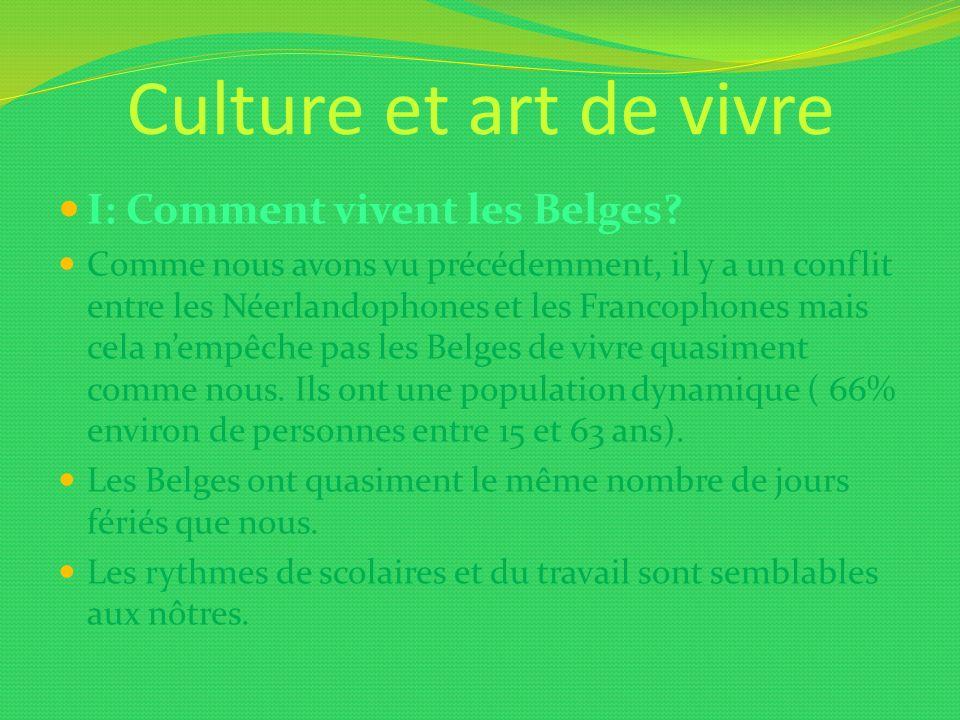 Culture et art de vivre I: Comment vivent les Belges